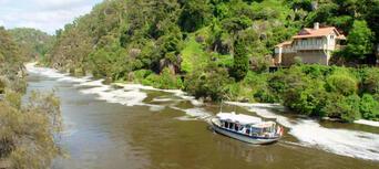 Tamar River Cruises - Lunch Cruise Thumbnail 3