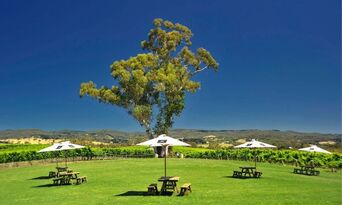 Adelaide Hills Wineries and Hahndorf Small Group Tour including Lunch Thumbnail 5