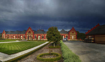 Barossa Valley Small Group Winery Tour from Adelaide including Lunch Thumbnail 5