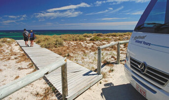 Rottnest Island Day Tour including Guided Bus Tour Thumbnail 1