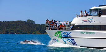 Bay of Islands Hole in the Rock Dolphin Cruise Thumbnail 2