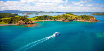 Bay of Islands Hole in the Rock Dolphin Cruise Thumbnail 5