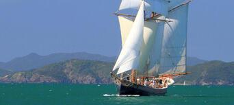 Bay of Islands Tall Ship Sailing Cruise Thumbnail 5