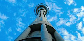 Auckland Half Day City Sights Tour Thumbnail 6