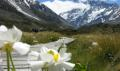 Mount Cook Day Tour ex Queenstown to Christchurch Thumbnail 1