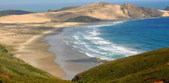 Cape Reinga Day Tour with 90 Mile Beach Thumbnail 2