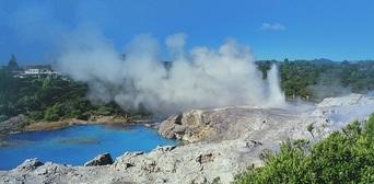 Rotorua Tour with Te Puia Rainbow Springs and Agrodome Show Thumbnail 2