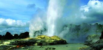 Rotorua Tour with Te Puia Rainbow Springs and Agrodome Show Thumbnail 3