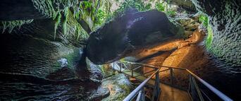 Te Anau Glowworm Caves Tour Thumbnail 2