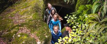 Te Anau Glowworm Caves Tour Thumbnail 4