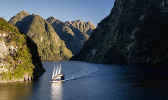 Doubtful Sound Wilderness Cruise from Manapouri Thumbnail 4
