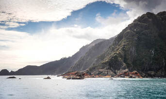 Doubtful Sound Wilderness Cruise from Manapouri Thumbnail 3