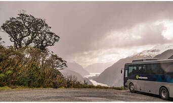 Doubtful Sound Overnight Cruise and Coach from Manapouri Thumbnail 3