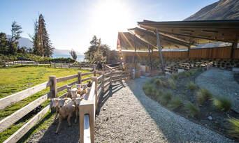 TSS Earnslaw Cruise and Walter Peak Farm Tour Thumbnail 3