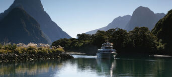 Milford Sound and Alpine Highlights with Boat Cruise Thumbnail 2