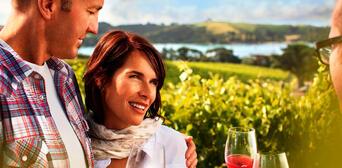 Waiheke Island Winery Day Tour Thumbnail 5