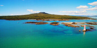 Rangitoto Island Tour from Auckland Thumbnail 3