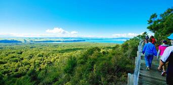 Rangitoto Island Tour from Auckland Thumbnail 2