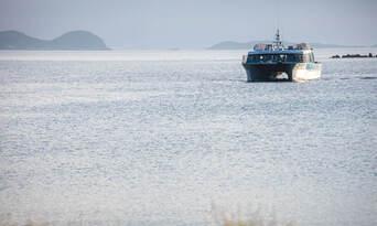 Stewart Island Ferry from Bluff Thumbnail 2