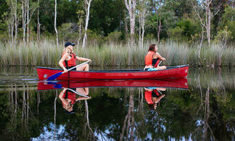 Cruise'n'Canoe Noosa Everglades Ecosafari Thumbnail 5