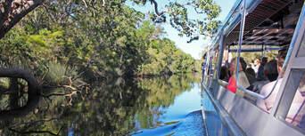 Cruise'n'Canoe Noosa Everglades Ecosafari Thumbnail 6