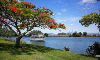 Tweed River and Rainforest Lunch Cruise Thumbnail 1