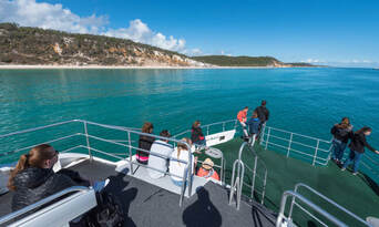 Hervey Bay Afternoon Whale Watching Cruise Thumbnail 1