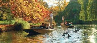 Punting on the Avon River, Christchurch Thumbnail 4