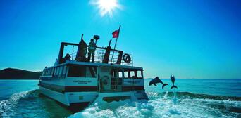 Akaroa Harbour Nature Cruise Thumbnail 4