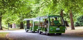 Christchurch Botanical Gardens Tour Thumbnail 2