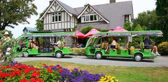 Christchurch Botanical Gardens Tour Thumbnail 1