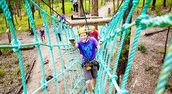 Gold Coast Hinterland Treetop Challenge Thumbnail 1