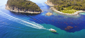 Bruny Island Wilderness Cruise from Adventure Bay Thumbnail 1