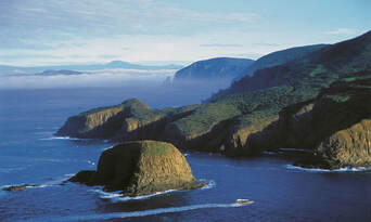 Bruny Island Wilderness Cruise and Bus Transfer from Hobart Thumbnail 2