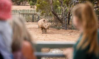 Monarto Safari Park Entry Tickets Thumbnail 2