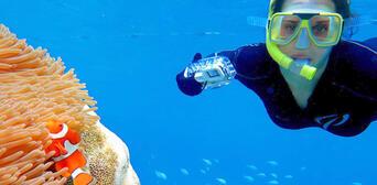 Great Barrier Reef and Kuranda Rainforest 2 Day Package Thumbnail 5