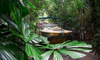 Kuranda Skyrail, Scenic Railway and Rainforestation Day Tour Thumbnail 5