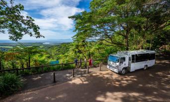 Cape Tribulation and Daintree Rainforest 4WD Day Tour Thumbnail 5