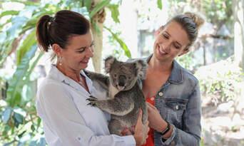 Lone Pine Koala Sanctuary Tickets Thumbnail 6