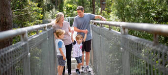 Illawarra Fly Treetop Walk Entry Thumbnail 1