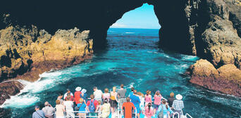 Bay of Islands Hole in the Rock Cruise and Day Tour from Auckland Thumbnail 1