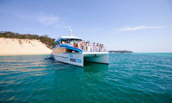 Moreton Island Dolphin and Tangalooma Wrecks Snorkelling Tour including Lunch Thumbnail 3