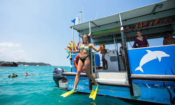 Moreton Island Dolphin and Tangalooma Wrecks Snorkelling Tour including Lunch Thumbnail 1