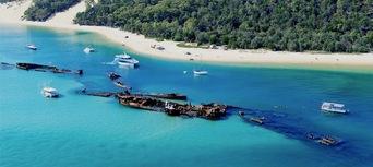 Moreton Island Dolphin and Tangalooma Wrecks Snorkelling Adventure Thumbnail 1