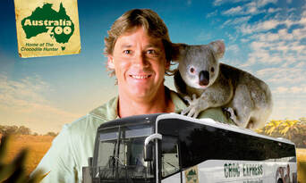 Croc Express to Australia Zoo from Brisbane Thumbnail 1