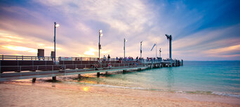 Tangalooma Dolphin Feeding Adventure Tour from Brisbane Thumbnail 5