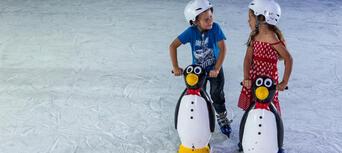 Gold Coast Ice Skating Thumbnail 4
