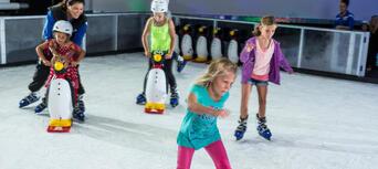 Gold Coast Ice Skating Thumbnail 6