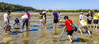Gold Coast Catch a Crab Cruise Thumbnail 4