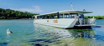 Gold Coast Catch a Crab Cruise Thumbnail 6